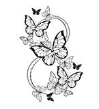 Eight of contour butterflies on white background
