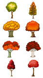 Eight different trees Stock Photography
