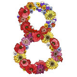 Eight digit made of different flowers. Floral element of colorful alphabet made from flowers. Vector illustration. Eight digit made of different flowers. Floral Stock Photography