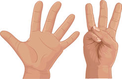 Eight from fingers cipher Stock Photography