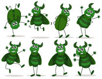 Eight green bugs Royalty Free Stock Photography