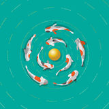 Eight Koi fish are swimming around a golden sphere. Royalty Free Stock Image