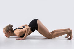 Eight-Limbed Posture Royalty Free Stock Photography