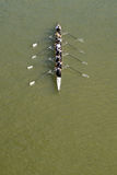 Eight men rowing on Danube river Royalty Free Stock Images