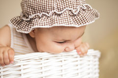 Eight month baby in basket Royalty Free Stock Photography