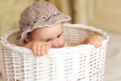 Eight month baby in basket Royalty Free Stock Photos
