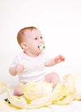 Eight-monthly baby Royalty Free Stock Images
