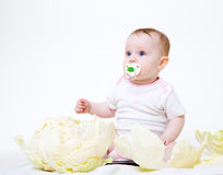 Eight-monthly baby Royalty Free Stock Photography