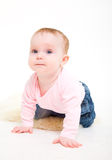 Eight-monthly girl in a pink jacket and jeans Royalty Free Stock Photography