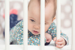 Eight months old baby girl in her bed Stock Image