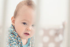 Eight months old baby girl in her bed Royalty Free Stock Photography