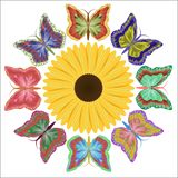 Eight motley beautiful butterflies and a bright flower vector illustration