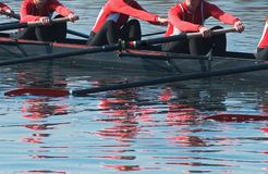 Eight Oar Sweep Boat Team Royalty Free Stock Photo