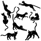 Eight silhouettes of funny cats. Set of eight black vector silhouettes of funny domestic cats in different poses on a white background, hand drawing illustration Stock Image