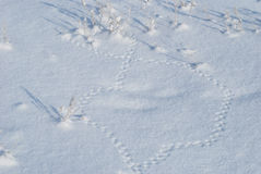 Eight on a snow from mouse traces Royalty Free Stock Image