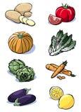 Eight vegetables - Colors. Colorful illustration of eight vegetables: potatoes - tomatoes - pumpkin - lettuce - artichokes - carrots - eggplants - lemons royalty free illustration
