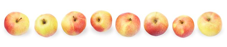 Eight Wet Apples Line. Top View on White Royalty Free Stock Photography