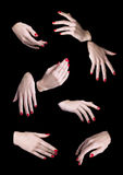 Eight Woman Hands Isolated. Nail Art Royalty Free Stock Images