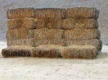 Eighteen bales of hay. Bales of hay Stock Images