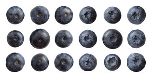 Eighteen Blueberry. Closeup of eighteen blueberry isolated on white, divided into two groups, two different sides for each nine, and all of them is different royalty free stock images