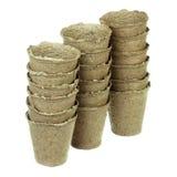 Peat pots Stock Image