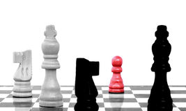 Eighth rank on chess board Stock Images