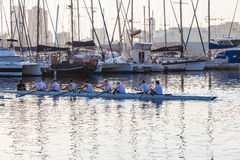Eights Canoe Rowing Regatta Royalty Free Stock Photography