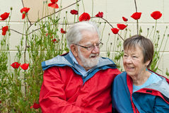 Eighty year old couple in raincoats with poppies. Eighty year old affectionate couple in red and blue raincoats near poppies in garden bed royalty free stock photo
