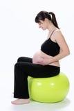 Eignung der schwangeren Frauen Stockfotografie