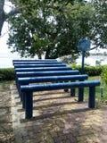 Eignung im Freien am Park Stockbilder