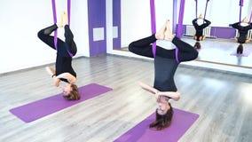 Eignung, Sport, Training, Yoga und Leutekonzept - Frauengruppe, die Yoga im Studio tut stock video