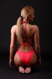 Eignungfrau im Bikini Stockfotos