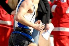 Eignunglack-läufer Lizenzfreie Stockbilder