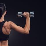 Eignungsfrau in den Trainingsmuskeln der Rückseite mit Dummköpfen Lizenzfreies Stockfoto