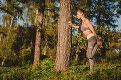 Eignungsfrau im Wald, die das Ausdehnen nach einem Training tut paßsitz Stockbild