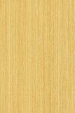 Eik (houten textuur) Stock Foto