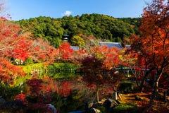 Eikando autumn foliage, Kyoto Royalty Free Stock Photography