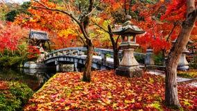 Eikando at autumn. Eikando shrine and bridge at peak autumn foliage colors on 22 Nov 2016, Kyoto, Japan Stock Image
