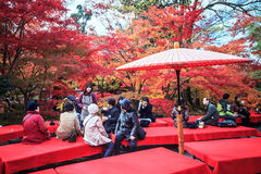 Eikando, Kyoto Stock Foto's