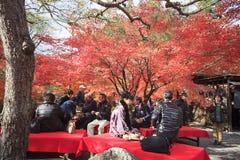Eikando, Kyoto Royalty Free Stock Photos