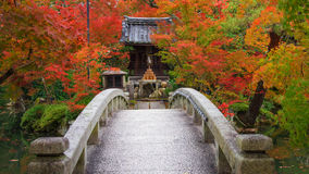 Eikando shrine and bridge with autumn foliage Royalty Free Stock Image