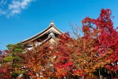 Eikando temple roof against autumn foliage Royalty Free Stock Photo