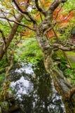 Eikando Zenrin-ji świątynia w Kyoto Fotografia Stock