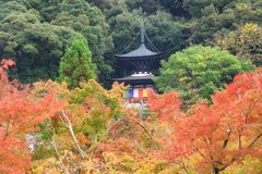 Eikando Zenrinji Temple at autumn, Kyoto. Eikando Zenrinji pagoda with colorful autumn foliage colors in Kyoto, Japan. View of Eternity Hall during the peak fall Royalty Free Stock Photo
