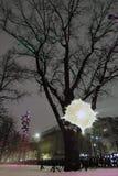 Eiken boom op Tverskoy-boulevard in Moskou, een natuurlijk oud monument meer dan 200 jaar Royalty-vrije Stock Afbeelding