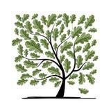 Eiken boom voor uw ontwerp Stock Afbeeldingen
