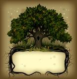 Eiken boom wih een banner Royalty-vrije Stock Afbeeldingen