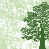 Eiken boomsilhouet op abstracte achtergrond Stock Afbeelding