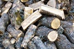 Eiken brandhout Stock Afbeeldingen