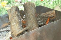 Eiken brandhoutbrandwonden in de ijzerbarbecue op de yard in de lente royalty-vrije stock fotografie